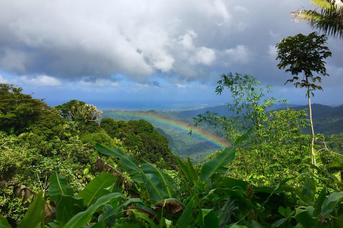 Travelogue, Puerto Rico, Day 2 (El Yunque andMofongo)