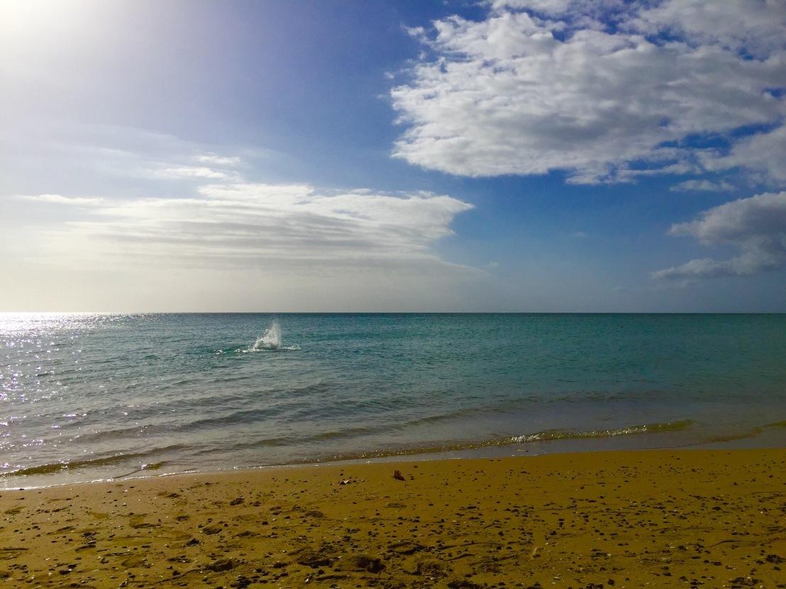 Combate beach, Puerto Rico
